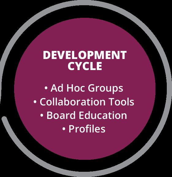 board portal: board development