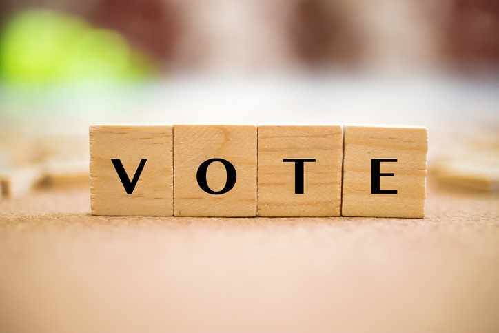 Nonprofit Voting Procedures