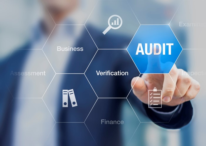 The Audit Committee Role In Managing Risk Is Critical For The Long Term Success Of Any Nonprofit Organization